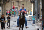 A Syrian boy rides a horse as others play in Aleppo during the ceasfire in September. Unfortunately, the ceasefire did not last. Photo: Thaer Mohammed