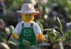 Little Lego Farmer watches over the clover. Photo: Aimee Snowden