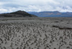 This photo shows the dried bed of Kluane Kale which used to be underwater. Photo: Jim Best, University of Illinois