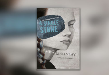 A Single Stone book cover.