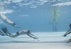 Underwater hockey at the nationals in January 2015. Photo: supplied