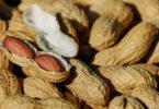 If you're allergic to peanuts, you're not alone.