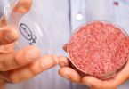 A burger made from Cultured Beef, which has been developed by Professor Mark Post of Maastricht University in the Netherlands 2013 Photo: David Parry PA Wire