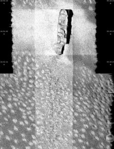 Sonar pulses were used to map the 40-metre-deep shipwreck of the SS Macumba, showing its broken bow. Photo: CSIRO Marine National Facility