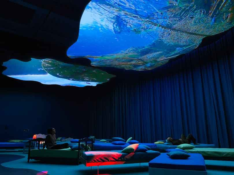 '4th Floor to Mildness', a 2016 installation by Pipilotti Rist unveiled on October 30, 2017 opening night of 'Sip My Ocean' exhibiting in the Museum of Contemporary Art Sydney. Photo: MCA