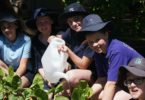 Harkaway Primary School students, from left, Natasha Rachici, Liam Daly​​​, Kiera​ Gray​, Asha ​Gallard ​and Tristian ​Stellato ​in the school the veggie garden​. Photo: Harkaway Primary School