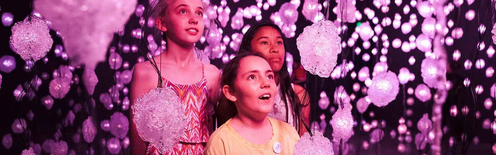 Kids exploring the 'Pixel Forest' on October 30, 2017, the opening night of Pipilotti Rist's exhibition at the Museum of Contemporary Art, Sydney. Photo: Daniel Boud