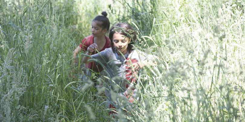 The Hansra brothers, Dhara, 7, in a red T-shirt, and Jodha, 9, playing outside on a warm day near their home on the Mornington Peninsula in Victoria. Photo: Elizabeth Clancy